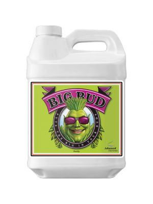 Advanced Nutrients Big Bud Liquid 10 liter