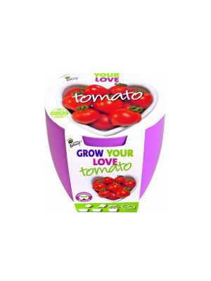 Buzzy grow kit lovebreaker tomaat