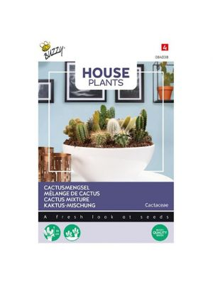 Buzzy House Plants Cactus mengsel