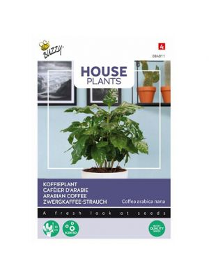 Buzzy House Plants Coffea Arabica, koffieplant