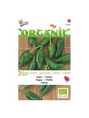 Buzzy Organic Peper Padron (BIO)