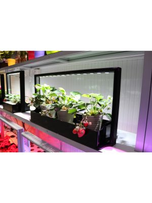 MINI-FARM M20, 65 cm, WIT Licht