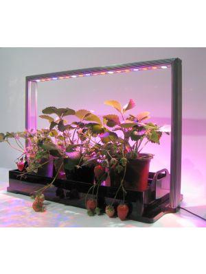 MINI-FARM M30 PRO, 65 cm, GEKLEURD Licht