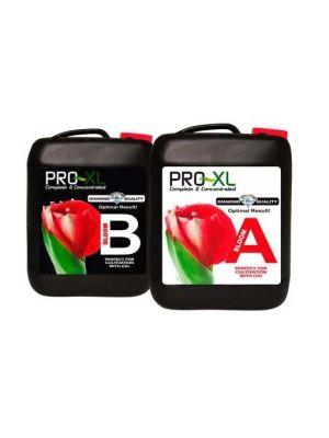 Pro-XL Bloom A+B 10 ltr